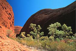 Australia, Uluru-Kata Tjuta National Park, gorge in Olga Mountains
