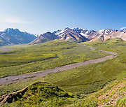 View of Polychrome Basin, Denali National Park, Alaska.