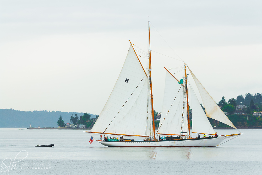 The Schooner Zodiac passing in front of Browns Point, WA