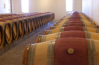 barrels of aging wines inthe chais of the famous Chateau Petrus in Pomerol, near Bordeaux