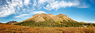 Composite panorama of early morning light on Sable and Igloo Mountains in Denali National Park in Interior Alaska. Autumn.