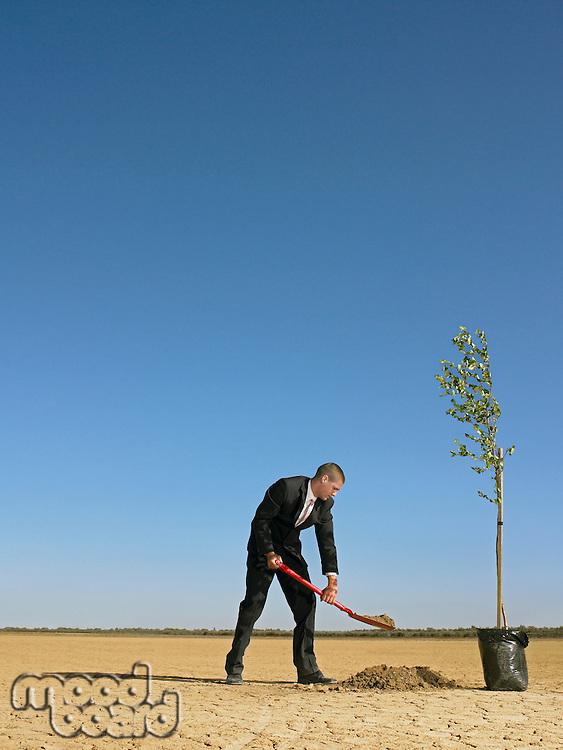Businessman planting tree in desert full length