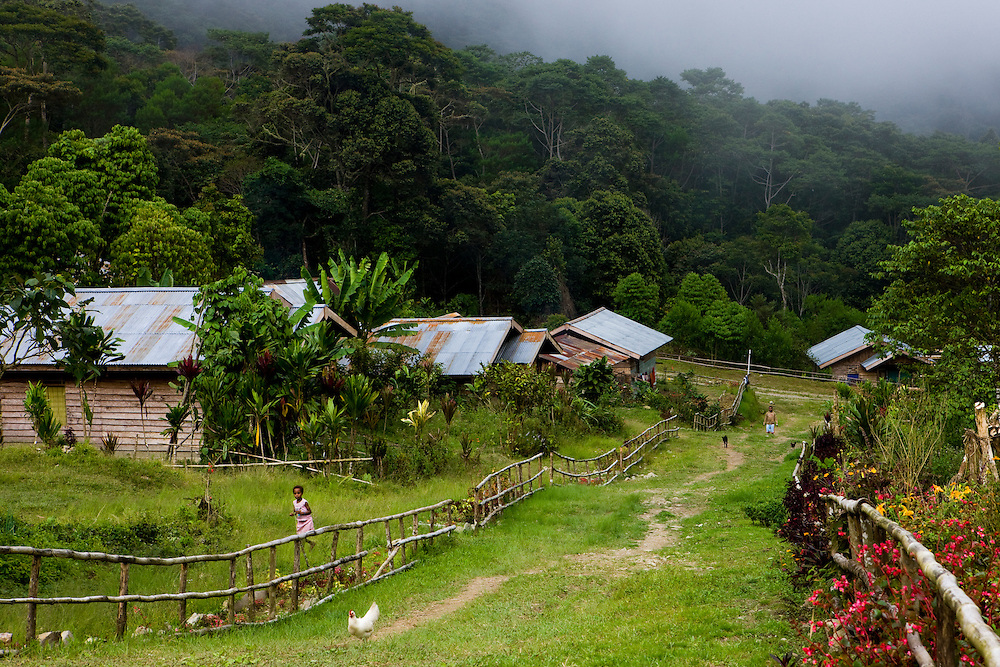 View of the village of Mokwam, Papua, Indonesia, and surrounding rainforest, Sept. 11, 2008..Daniel Beltra/Greenpeace