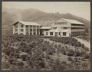 Gezicht op gebouwen en plantage van de theefabriek Peradeniya op Ceylon, Charles T. Scowen &amp; Co., c. 1875 - c. 1880<br /> View of buildings and plantation of tea factory
