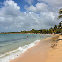 Top Rated Salines Beach near Sainte-Anne, Martinique<br />