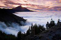 The Teide volcano (the highest mountain of Spain, 3.718 m), comes out from the fog sea at sunset. Teide National Park, Tenerife Island, Canary Islands, Spain.