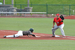 29 July 2016: Justin Fletcher dives in a to first on a pick off throw to Jose Barraza during a Frontier League Baseball game between the Lake Erie Crushers and the Normal CornBelters at Corn Crib Stadium on the campus of Heartland Community College in Normal Illinois