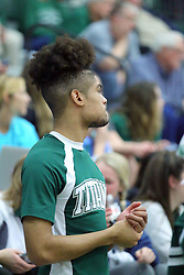 21 February 2017:  Titan Cheerleader during an College men's division 3 CCIW basketball game between the Augustana Vikings and the Illinois Wesleyan Titans in Shirk Center, Bloomington IL
