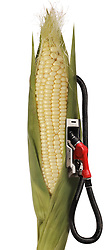 corn stalk ethanol gas pump