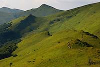 Grasslands of Halicz, Bieszczady National Park, Poland
