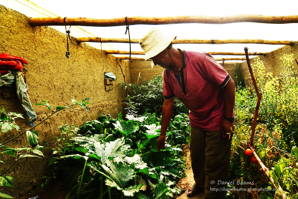 Quechua man proud of his greenhouse at 12,000 ft in the Andes, Cochabamba, Bolivia