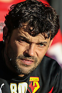 Slavisa Jokanovic Manager of Watford looks on before the Sky Bet Championship match at Vicarage Road, Watford<br /> Picture by David Horn/Focus Images Ltd +44 7545 970036<br /> 01/11/2014