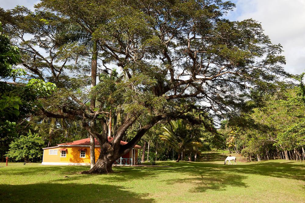 The Castro farm in Biran, Holguin, Cuba.