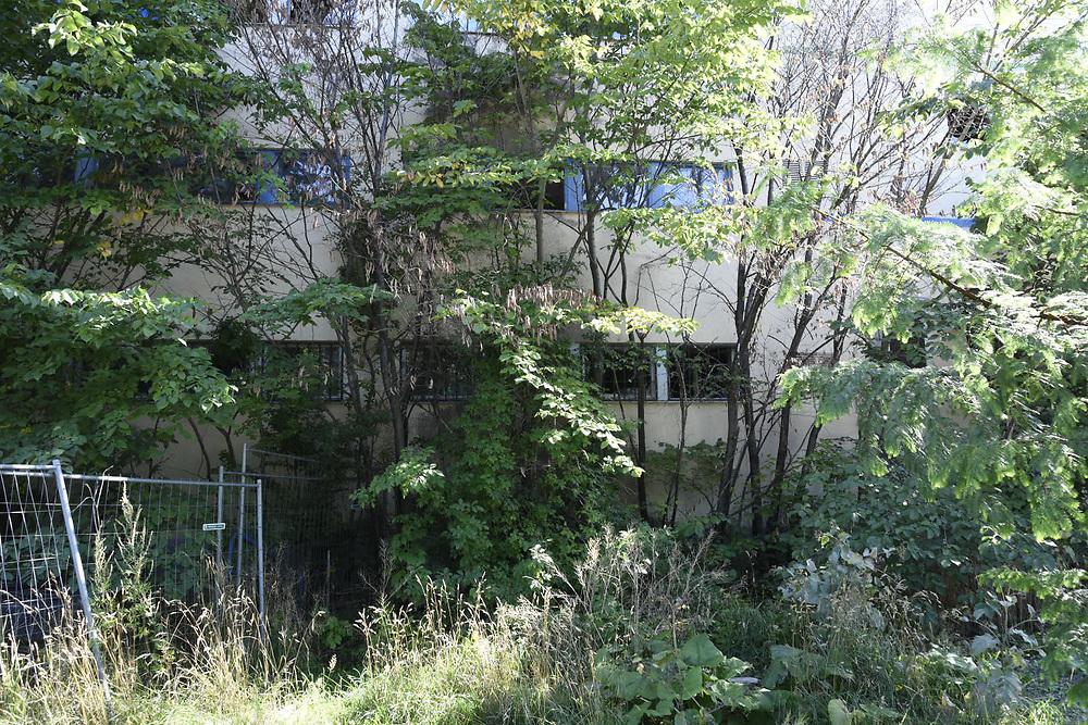 Beckers färgfabrik i Gröndal, Lövholmen, växer igen.