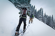 Two men clibming up Angle Mountain at Togwotee Pass, Bridger Teton National Forest, Wyoming with their ski in snow.  Model Released #0012010, #0022010