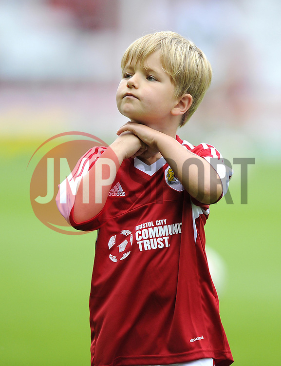 Mascot  - Photo mandatory by-line: Joe Meredith/JMP - Tel: Mobile: 07966 386802 17/08/2013 - SPORT - FOOTBALL - Ashton Gate - Bristol -  Bristol City V Wolves - Sky Bet League One