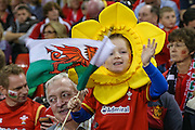 Young welsh fan during the Rugby World Cup Pool A match between Wales and Fiji at Millenium Stadium, Cardiff, Wales on 1 October 2015. Photo by Shane Healey.