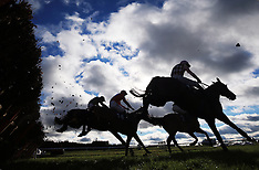 Sky Bet Chase Day - Doncaster Racecourse - 28 Jan 2017