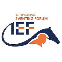 IEF Client Assets