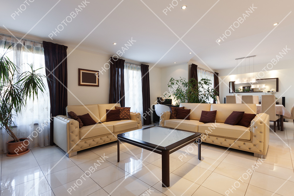 living room of a modern apartment, leather sofas