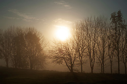 ©Licensed to London News Pictures 09/11/2019.<br /> Orpington,UK. A cold and misty sunrise this morning across Cray Valley golf club, Orpington, South East London. Photo credit: Grant Falvey/LNP