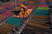 Drying freshly dyed sarees on bamboo racks, Pali, Rajasthan