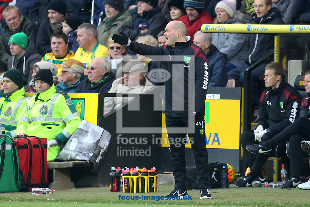 Norwich Manager Alex Neil during the Barclays Premier League match at Carrow Road, Norwich<br /> Picture by Paul Chesterton/Focus Images Ltd +44 7904 640267<br /> 13/02/2016