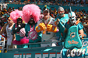 Sunday, October 13, 2019; Miami Gardens, FL USA;  Excited Miami Dolphins fans cheer for their team during an NFL game against Washington at Hard Rock Stadium. The Redskins beat the Dolphins 17-16. (Kim Hukari/Image of Sport)