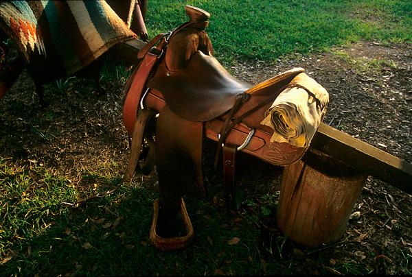 horse saddle sitting out