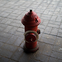 A red fire hydrants on a paved walkway
