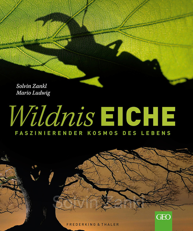 My book Wildnis Eiche<br /> ISBN-13: 78-3954161430<br /> Buch bei amazon anschauen:<br /> https://www.amazon.de/dp/3954161435