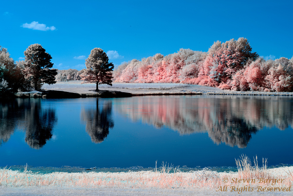 Reflections on Veteran's Memorial Lakeview Park lake in Waterloo, Illinois captured with digital camera converted for infrared