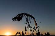 Harrie Fasher - Transition - Sculpture By The Sea, Cottesloe 2018 - Photograph by David Dare Parker