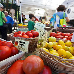 Fresh tomatoes at Derek Ritchie's Sangha Farm booth at the Tuesday Market farmer's market in Northampton, Massachusetts.