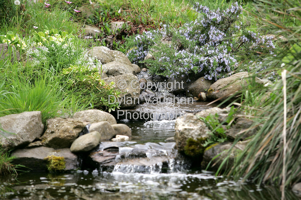 14/5/2004.One of the water features in Naomi Coad-Maenpaa's garden at her home in Mahon Bridge.Picture Dylan Vaughan