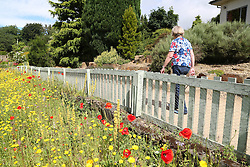 © Licensed to London News Pictures. 18/07/2016. Batley, UK. A woman wearing a colourful flowery shirt enjoys a stroll in the high temperatures and sunny weather at Golden Achre park in Leeds West Yorkshire.The UK is set to experience a mini heatwave over the next week with temperatures hitting the highest of the year so far.  Photo credit : Ian Hinchliffe/LNP