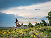 A red barn and old pickup truck stand with blooming wildflowers against a dark sky on the Vickerman Ranch.