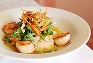 COTUIT -- 111710 -- Chef Weldon Fizell's caramelized George&iacute;s Bank sea scallops with roasted butternut squash risotto topped with pea tendrils, crisp Parsnips in a herb butter sauce.<br /> Cape Cod Times/Christine Hochkeppel 111710ch08