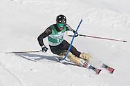 UVM Ski Carnival at Stowe.  Giant Slalom and Slalom.