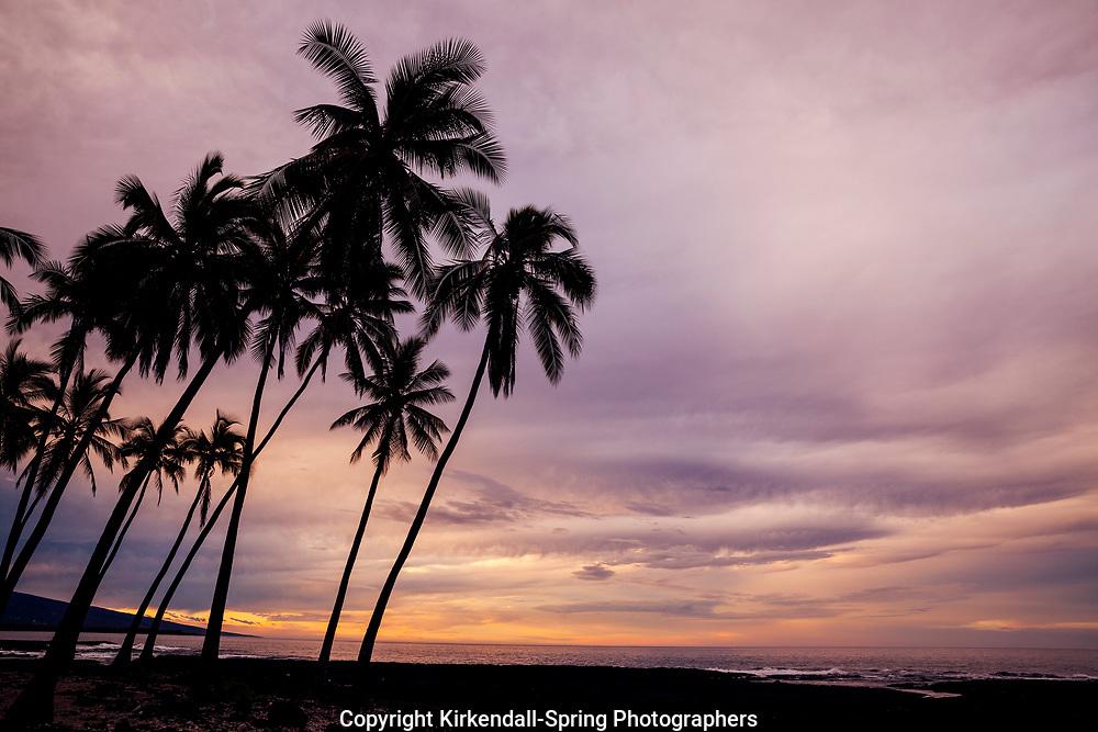 HI00473-00...HAWAI'I - Sunrise at Pu'uhonua o Honaunau National Historic Park on the island of Hawai'i.