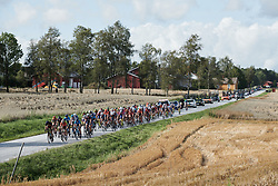 The peloton charge through the Norwegian countryside during Ladies Tour of Norway 2019 - Stage 2, a 131 km road race from Mysen to Askim, Norway on August 23, 2019. Photo by Sean Robinson/velofocus.com