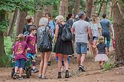 Enjoying the woods - The 2017 Latitude Festival, Henham Park. Suffolk 15 July 2017