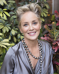 December 12, 2017 - Hollywood, California, U.S. - American Actress SHARON STONE promotes the movie 'Mosaic' in Hollywood. (Credit Image: © Armando Gallo via ZUMA Studio)