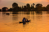 Shikaras (boats) on Dal Lake at sunset, Srinagar, Kashmir, Jammu and Kashmir State; India.