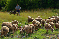Shepherd, Velebit Nature Park, Rewilding Europe rewilding area, Velebit  mountains, Croatia