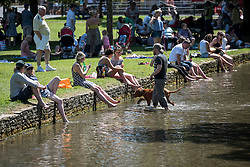 © Licensed to London News Pictures. 19/07/2016. BOURBON ON THE WATER, GLOUCESTERSHIRE, UK.  Walking the dog in the river Windrush  to cool off. Hottest day of the year in Bourton on the Water in Gloucestershire..  Photo credit: MARK HEMSWORTH/LNP
