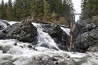 Lower falls at Englishman River,    Photo: Peter Llewellyn