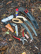 Tony Kirkham's pruning tools including Felco secateurs, diamond sharpener, Silky folding pruning saw and pruning saws