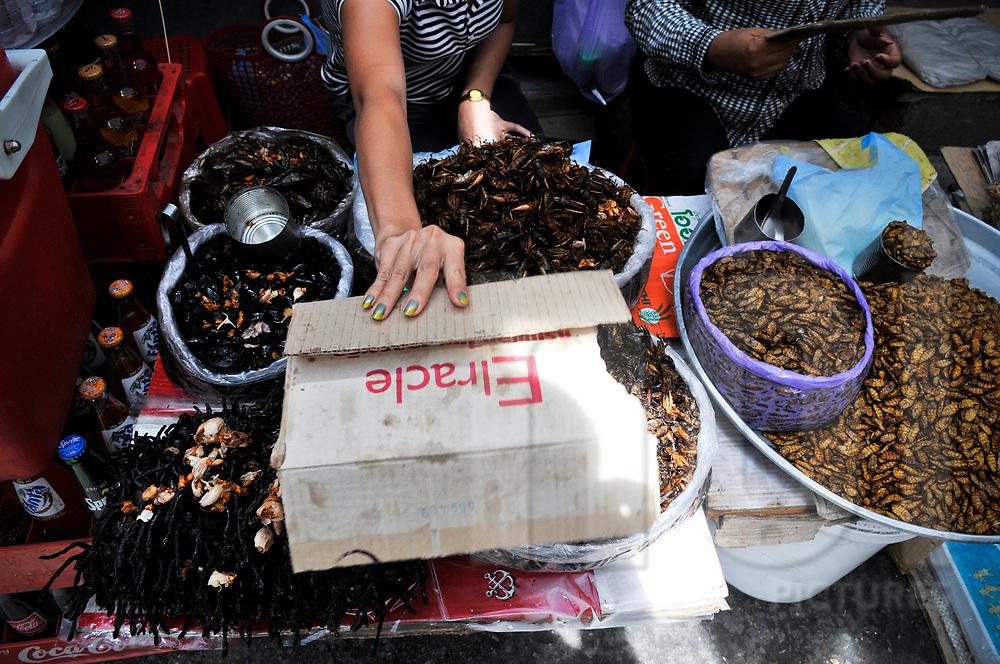 Insect vendors in Central Market, Phnom Penh, Cambodia, Southeast Asia