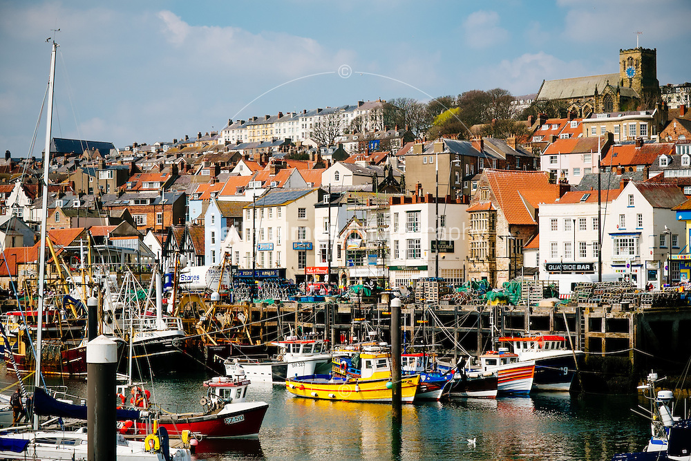 Harbour, Scarbrough, North Yorkshire, United Kingdom, 24 April, 2015. Pictured: